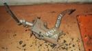 педаль сцепления для автомобиля Daewoo Leganza